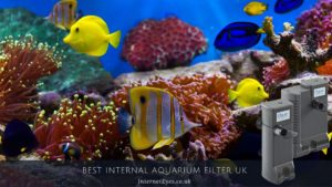 Best Internal Aquarium Filter UK