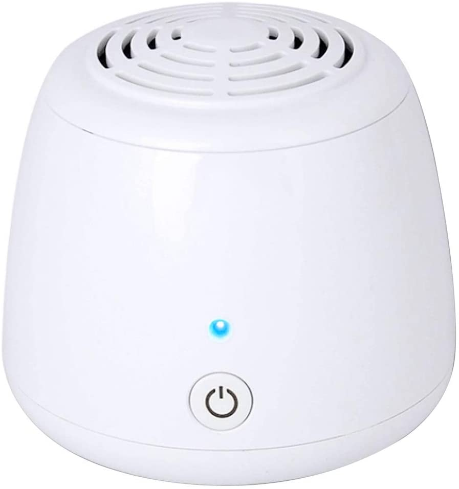 Air Purifier for Allergies with Filter & Ionizer Compact Air Purifier