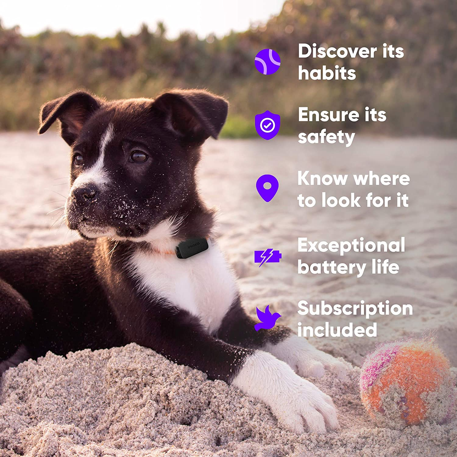 Pet Tracker GPS & activity monitoring tracker for cats and dogs