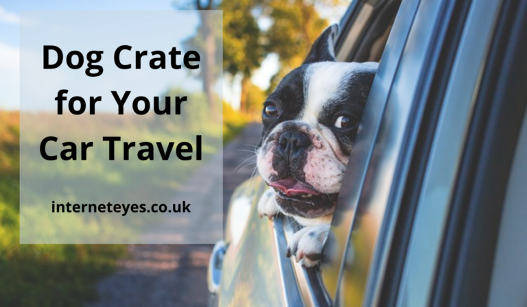 Dog Crate for Your Car Travel