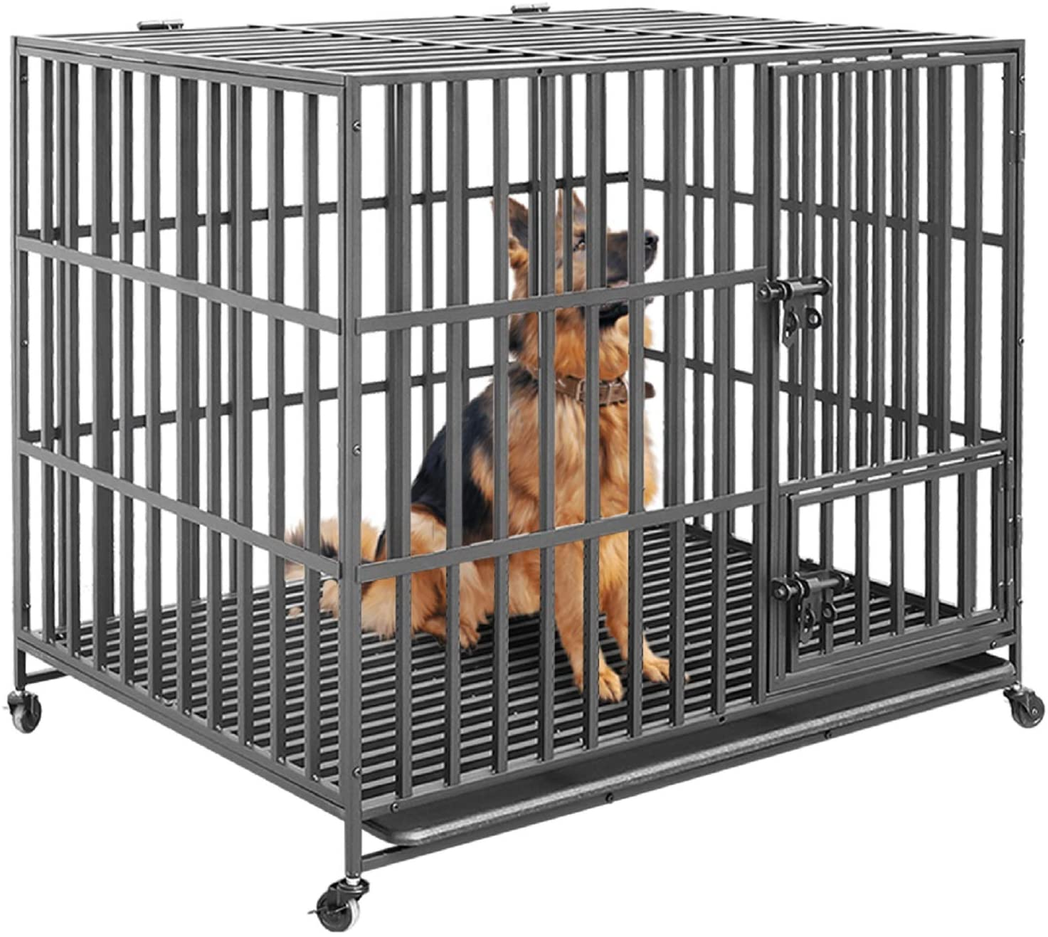 Bingopaw Strong Kennel Dog Crate