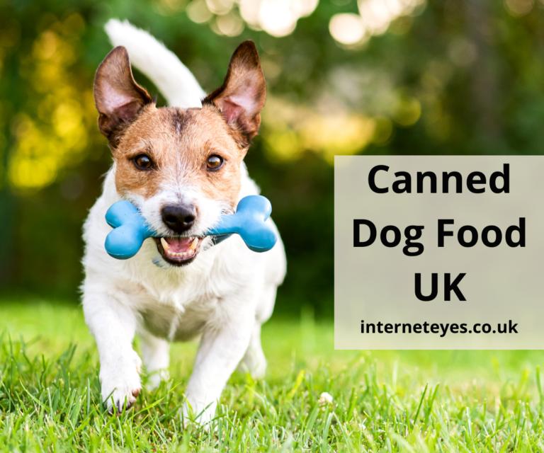 Canned Dog Food UK