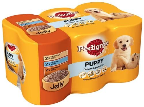 Pedigree Canned Puppy Food in Jelly